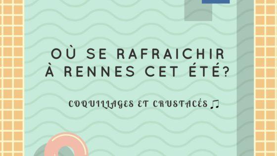 OU SE RAFRAICHIR A RENNES CET ETE LE FLANEUR PISCINE